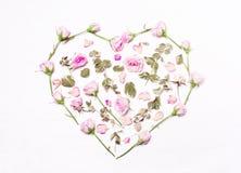 Ρόδινα λουλούδια, πράσινα φύλλα με μορφή μιας καρδιάς Στοκ Εικόνα