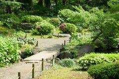 Ρόδινα λουλούδια, πράσινες εγκαταστάσεις, δέντρο, μονοπάτι στον κήπο Στοκ εικόνες με δικαίωμα ελεύθερης χρήσης