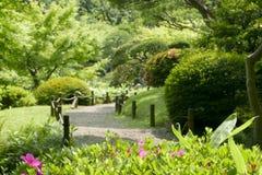 Ρόδινα λουλούδια, πράσινες εγκαταστάσεις, δέντρο, μονοπάτι στο πάρκο zen Στοκ φωτογραφίες με δικαίωμα ελεύθερης χρήσης