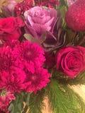 Ρόδινα λουλούδια Στοκ φωτογραφίες με δικαίωμα ελεύθερης χρήσης