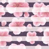 Ρόδινα λουλούδια sakura με τα πέταλα στο ριγωτό υπόβαθρο Άνευ ραφής σχέδιο με τα θερινά λουλούδια Στοκ εικόνα με δικαίωμα ελεύθερης χρήσης