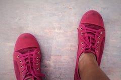 Ρόδινα πάνινα παπούτσια - εξαρτήματα και φορετός (πάνινα παπούτσια) Στοκ Φωτογραφίες