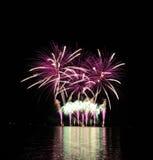 Ρόδινα πυροτεχνήματα Στοκ εικόνα με δικαίωμα ελεύθερης χρήσης
