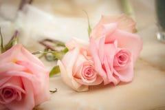 Ρόδινα τριαντάφυλλα έτοιμα για την ανθοδέσμη στοκ εικόνες