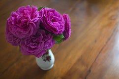 ρόδινα τριαντάφυλλα ανθο& Στοκ Εικόνα