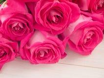 ρόδινα τριαντάφυλλα ανθο& Στοκ Εικόνες