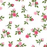 ρόδινα τριαντάφυλλα προτύπ επίσης corel σύρετε το διάνυσμα απεικόνισης απεικόνιση αποθεμάτων