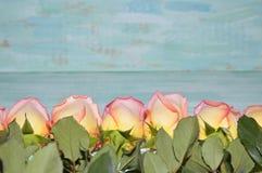 Ρόδινα τριαντάφυλλα στο μπλε υπόβαθρο Στοκ φωτογραφία με δικαίωμα ελεύθερης χρήσης