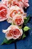 ρόδινα τριαντάφυλλα Στοκ εικόνα με δικαίωμα ελεύθερης χρήσης