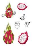 Ρόδινα pitaya κινούμενων σχεδίων ή φρούτα δράκων Στοκ φωτογραφίες με δικαίωμα ελεύθερης χρήσης