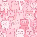 Ρόδινες γάτες σχεδίων Στοκ Εικόνες