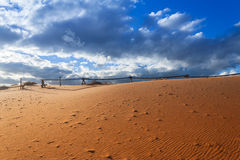 ρόδινη άμμος αμμόλοφων κορ&al Στοκ εικόνες με δικαίωμα ελεύθερης χρήσης