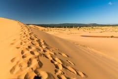 ρόδινη άμμος αμμόλοφων κορ&al Στοκ φωτογραφίες με δικαίωμα ελεύθερης χρήσης