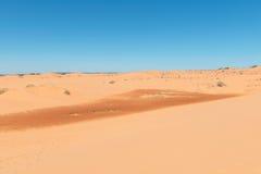 ρόδινη άμμος αμμόλοφων κορ&al Στοκ Εικόνες