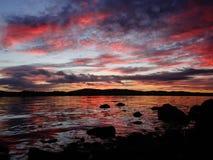 Ρόδινη αυγή Στοκ Φωτογραφία