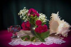 Ρόδινη διάθεση των τριαντάφυλλων Στοκ Εικόνες