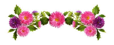 Ρόδινη και πορφυρή σύνθεση λουλουδιών και οφθαλμών αστέρων στοκ εικόνες