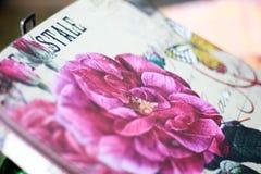 Ρόδινη σύσταση λουλουδιών κιβωτίων οθόνης Στοκ φωτογραφίες με δικαίωμα ελεύθερης χρήσης