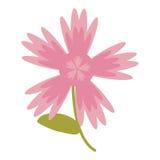 ρόδινη φυσική εικόνα λουλουδιών διανυσματική απεικόνιση