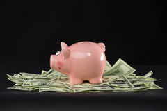 Ρόδινη piggy τράπεζα που στέκεται στα δολάρια Στοκ Εικόνες