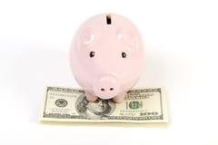 Ρόδινη piggy τράπεζα που στέκεται στο σωρό των αμερικανικών λογαριασμών εκατό δολαρίων χρημάτων Στοκ Εικόνες