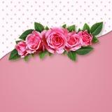 Ρόδινος αυξήθηκε λουλούδια στο ρόδινο υπόβαθρο Στοκ Εικόνες