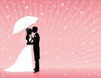 ρόδινος γάμος ανασκόπηση&sig Στοκ Φωτογραφία