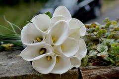 ρόδινος ρομαντικός γάμος λουλουδιών κομψότητας διακοσμήσεων ανασκόπησης Στοκ Φωτογραφίες