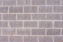 ρόδινος τοίχος τόνου Στοκ Εικόνα