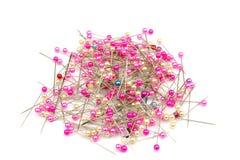 Ρόδινος όγκος καρφιτσών μαργαριταριών επικεφαλής Στοκ Εικόνες