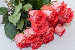 Ρόδινο άσπρο υπόβαθρο τριαντάφυλλων букет Στοκ εικόνες με δικαίωμα ελεύθερης χρήσης