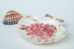 Ρόδινο άλας λουτρών θάλασσας σε ένα άσπρο κοχύλι θάλασσας με άλλο στο υπόβαθρο Στοκ Εικόνες