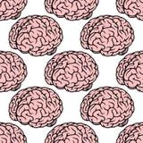 Ρόδινο ανθρώπινο άνευ ραφής σχέδιο εγκεφάλου ελεύθερη απεικόνιση δικαιώματος