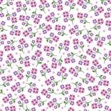 Ρόδινο διανυσματικό άνευ ραφής σχέδιο λουλουδιών Στοκ Φωτογραφίες