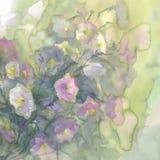 Ρόδινο και άσπρο υπόβαθρο watercolor λουλουδιών διανυσματική απεικόνιση