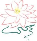Ρόδινο λουλούδι λωτού Στοκ φωτογραφία με δικαίωμα ελεύθερης χρήσης