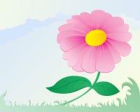 Ρόδινο λουλούδι απεικόνιση αποθεμάτων