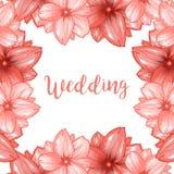Ρόδινο πλαίσιο λουλουδιών ανθών ή sakura κερασιών για το γαμήλιο σχέδιο Στοκ Εικόνες