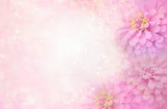 Ρόδινο πλαίσιο λουλουδιών στο μαλακό εκλεκτής ποιότητας υπόβαθρο bokeh Στοκ Εικόνες