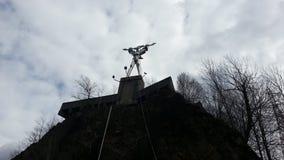 ρόδινο ύδωρ κρίνων Στοκ εικόνες με δικαίωμα ελεύθερης χρήσης