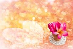 Ρόδινο coloHeart bokeh και ρόδινος βαλεντίνος λουλουδιών backgroundur μαλακός Στοκ Εικόνα