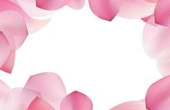 Ρόδινο Lotus στο μαλακό ύφος χρώματος και θαμπάδων Στοκ Εικόνες