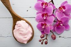 Ρόδινο Orchid λουλούδι Στοκ φωτογραφίες με δικαίωμα ελεύθερης χρήσης