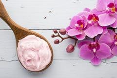 Ρόδινο Orchid λουλούδι Στοκ Εικόνα