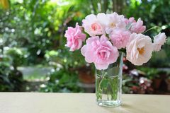 ρόδινο vase τριαντάφυλλων Στοκ εικόνα με δικαίωμα ελεύθερης χρήσης