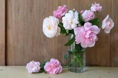 ρόδινο vase τριαντάφυλλων Στοκ Φωτογραφίες