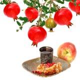 Ρόδι, φρούτα μήλων και χτένα μελιού με το μέλι η σκούπα απομόνωσε το λε&u Στοκ Φωτογραφίες