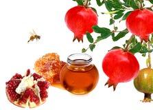 Ρόδι, φρούτα μήλων και χτένα μελιού με το μέλι Στοκ Φωτογραφία