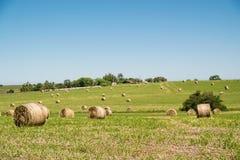 Ρόλοι γεωργίας Στοκ εικόνες με δικαίωμα ελεύθερης χρήσης