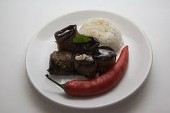 Ρόλοι κολοκυθιού με το ρύζι Στοκ Εικόνα